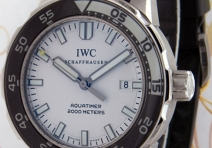 IWC IW356806 Aquatimer 2000, Steel